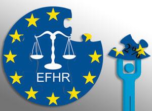 Wesprzyj działalność EFHR!