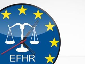 EFHR poszukuje koordynatora projektów