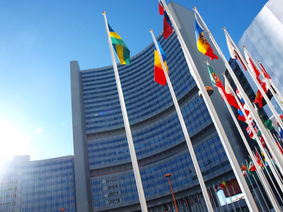 """Projekt edukacyjny """"Europejczycy, Polacy, Obywatele"""", TEMAT V: Organizacje międzynarodowe"""